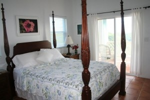 Master Bedroom with Queen Size Mahogany Bed